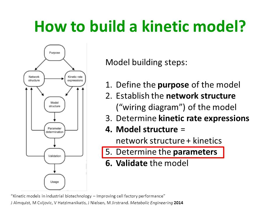 How to build a kinetic model