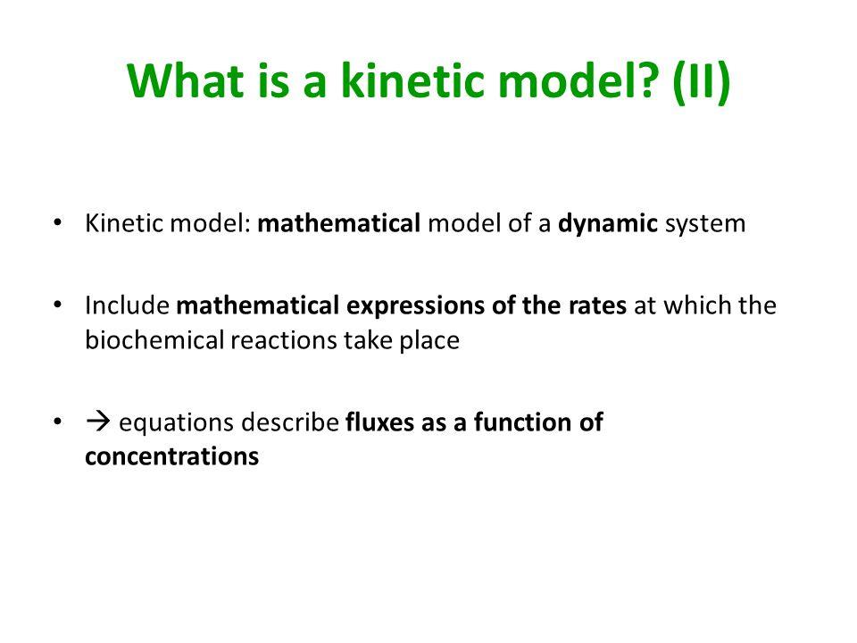 What is a kinetic model (II)