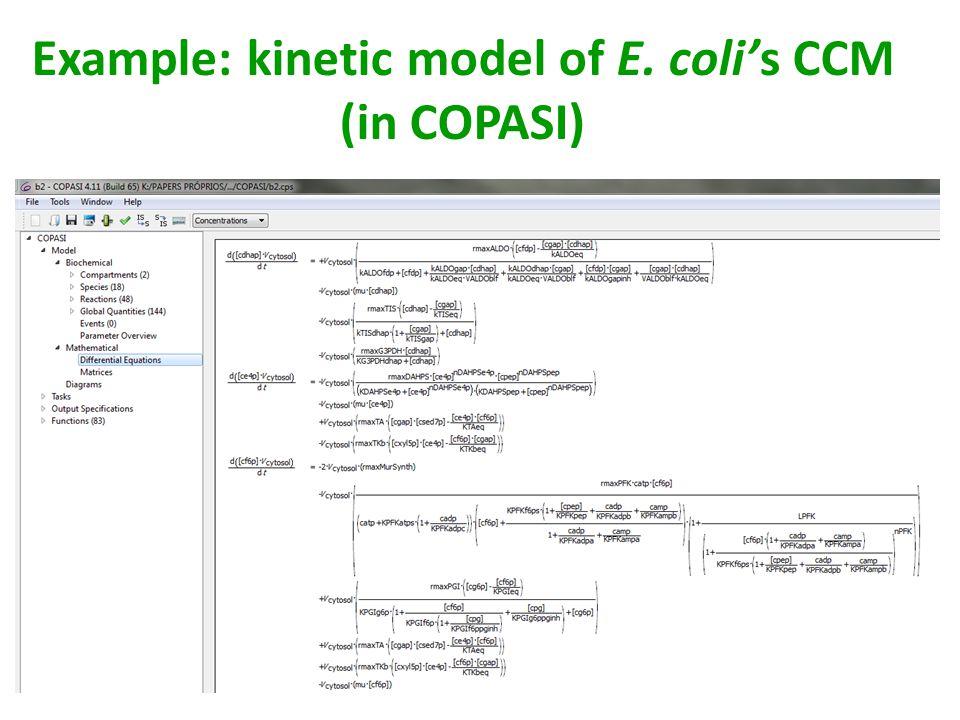 Example: kinetic model of E. coli's CCM (in COPASI)