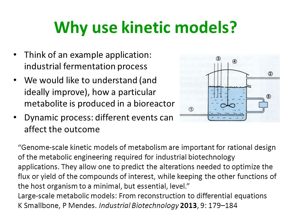 Why use kinetic models Think of an example application: industrial fermentation process.