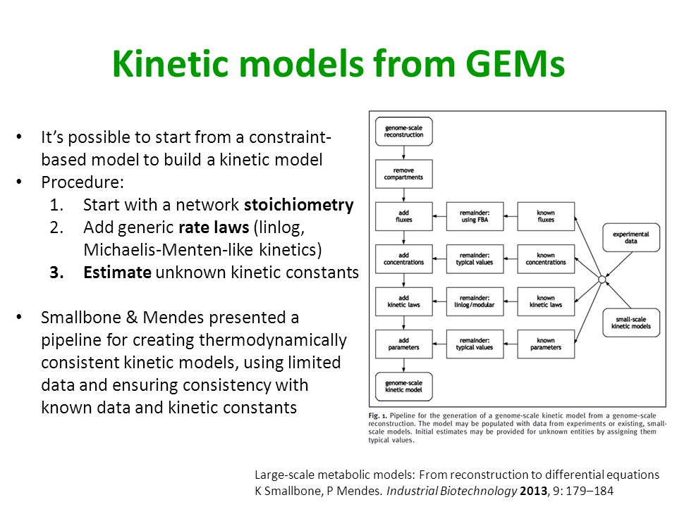 Kinetic models from GEMs