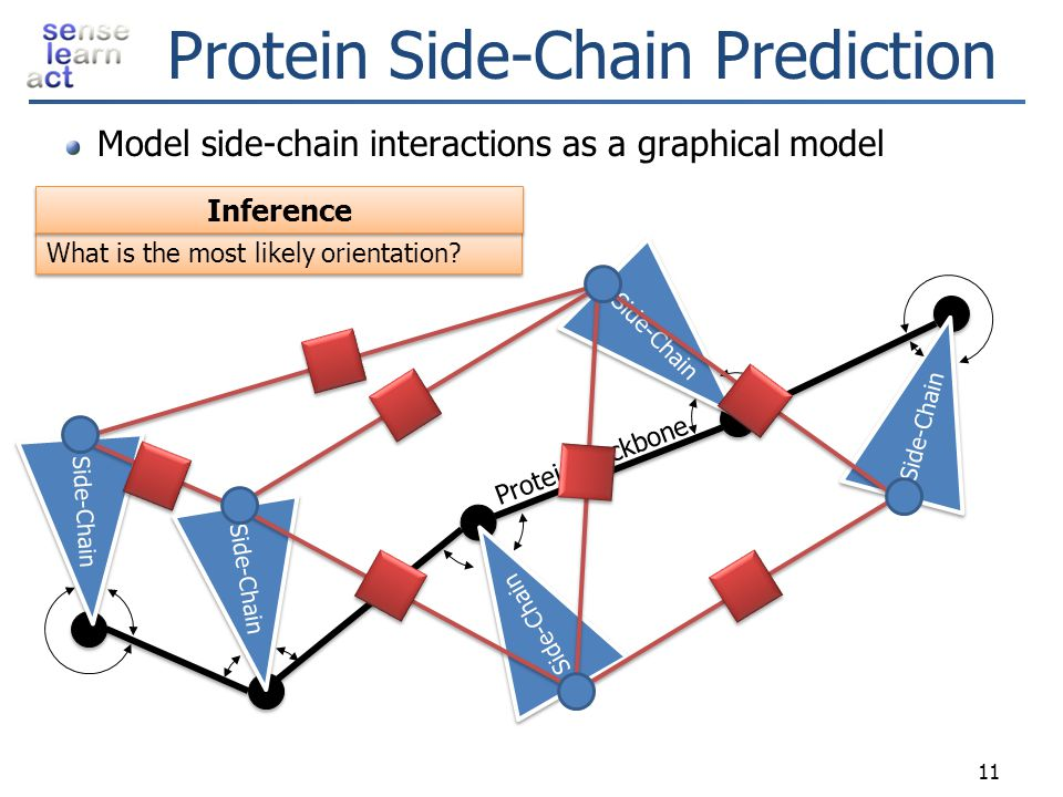 Protein Side-Chain Prediction
