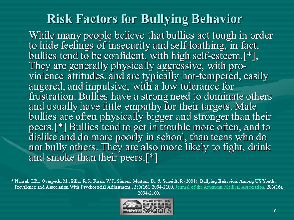Risk Factors for Bullying Behavior