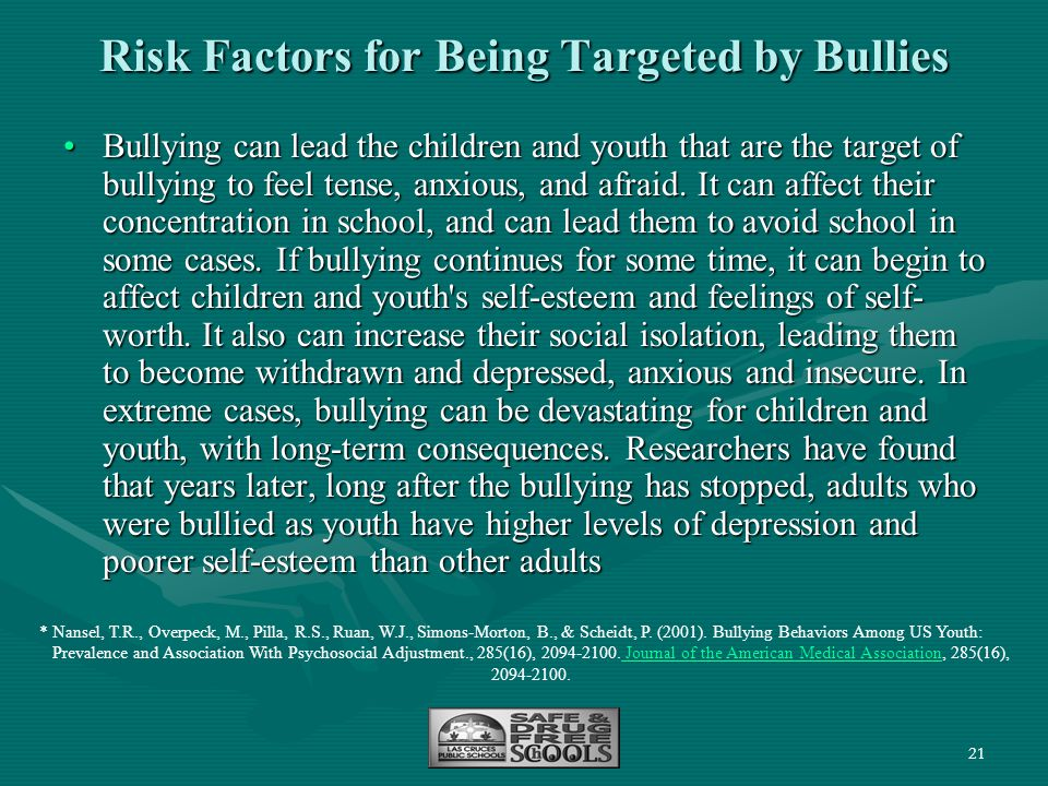 Risk Factors for Being Targeted by Bullies