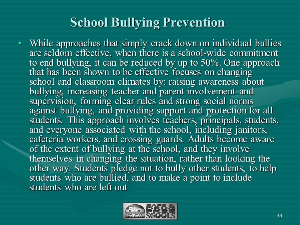 School Bullying Prevention