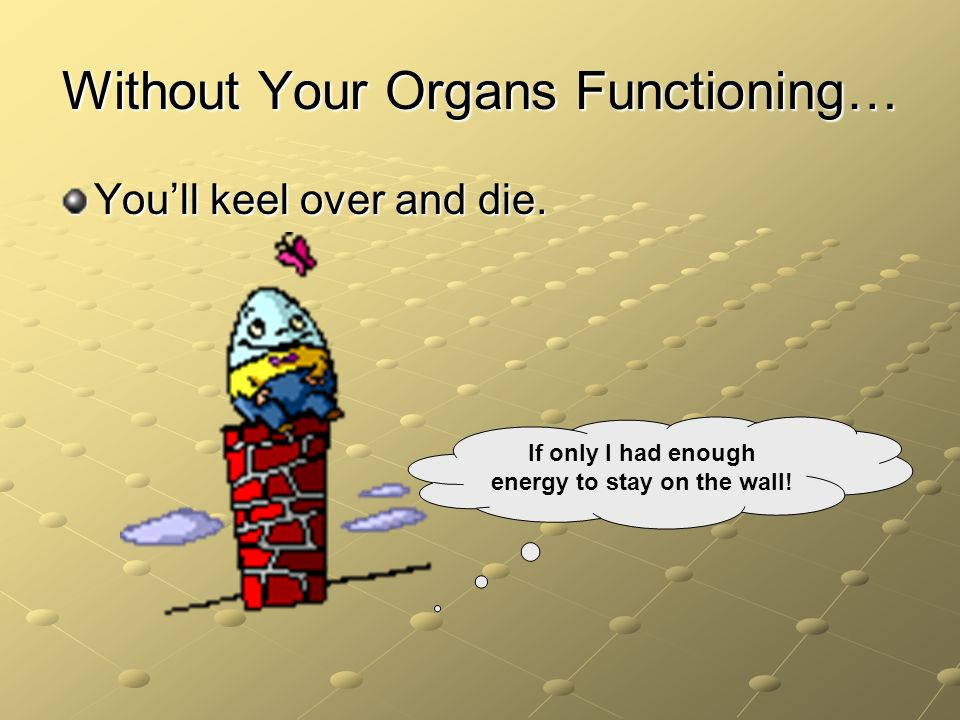 Without Your Organs Functioning…