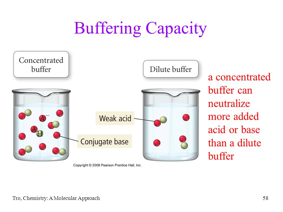 Buffering Capacity a concentrated buffer can neutralize more added acid or base than a dilute buffer.