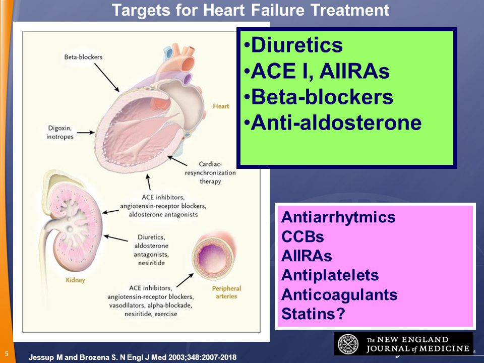 Targets for Heart Failure Treatment