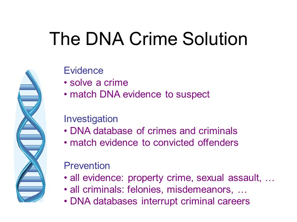 The DNA Crime Solution Evidence • solve a crime