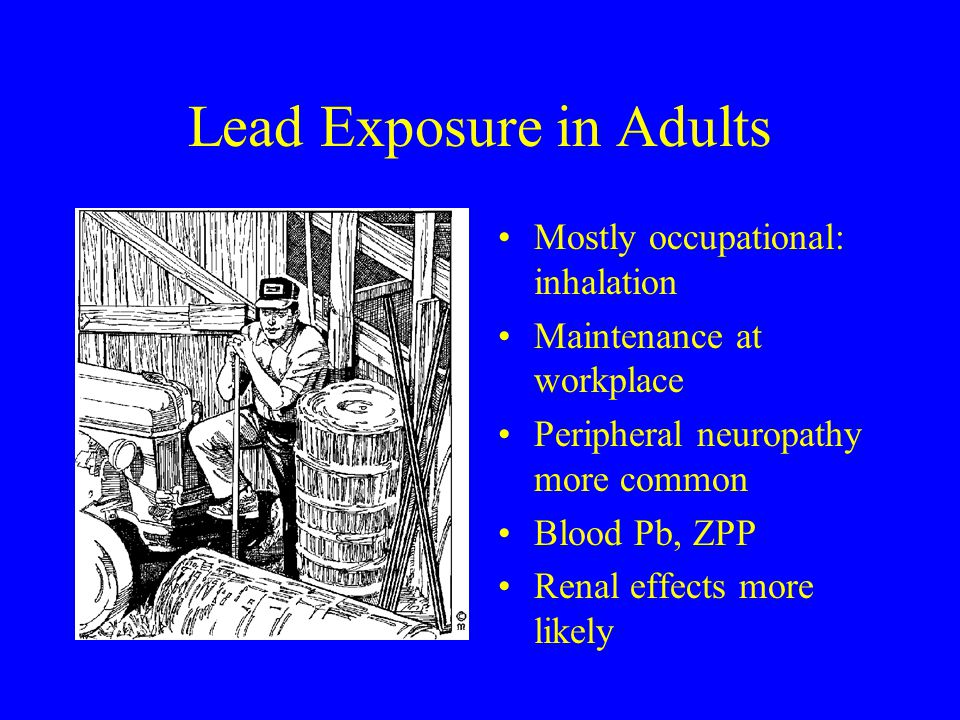Lead Exposure in Adults