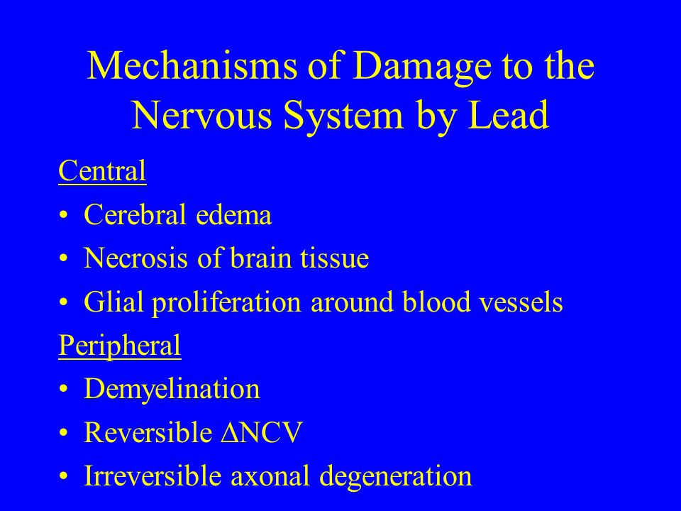 Mechanisms of Damage to the Nervous System by Lead
