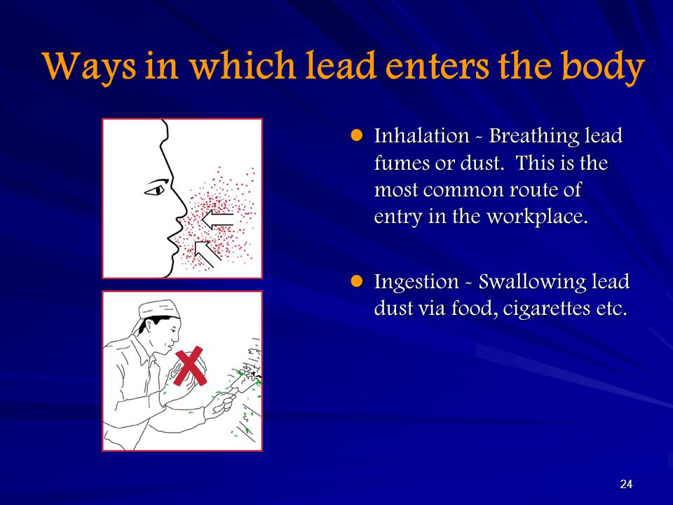 Ways in which lead enters the body