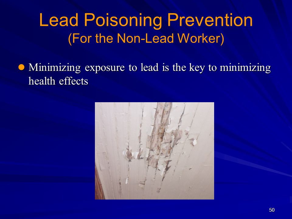 Lead Poisoning Prevention (For the Non-Lead Worker)