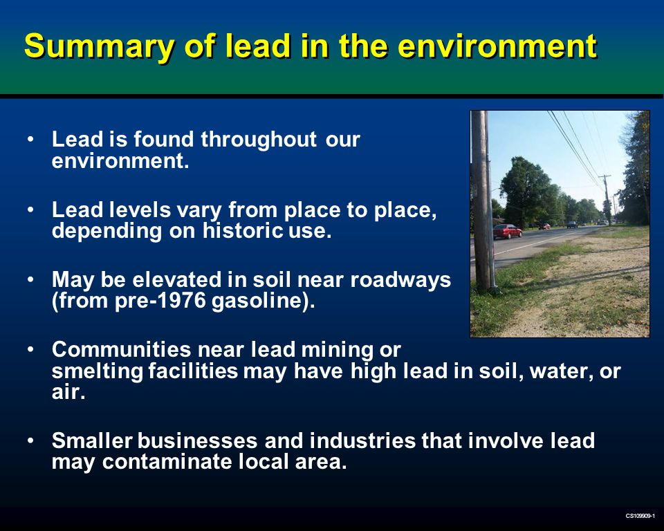 Summary of lead in the environment