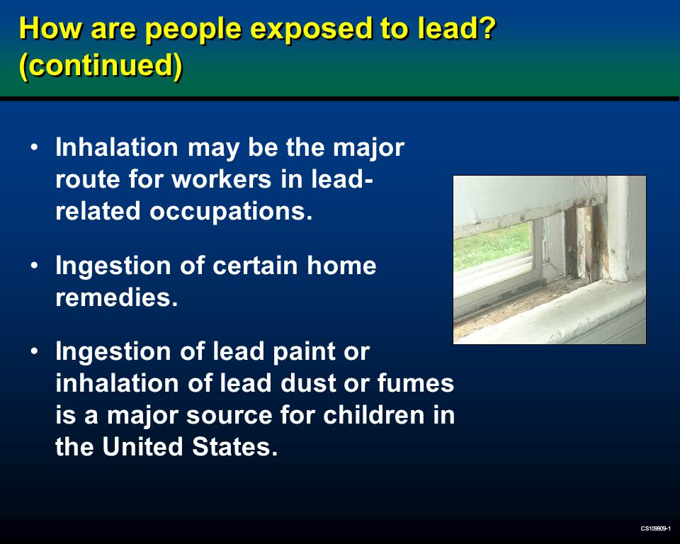 How are people exposed to lead (continued)