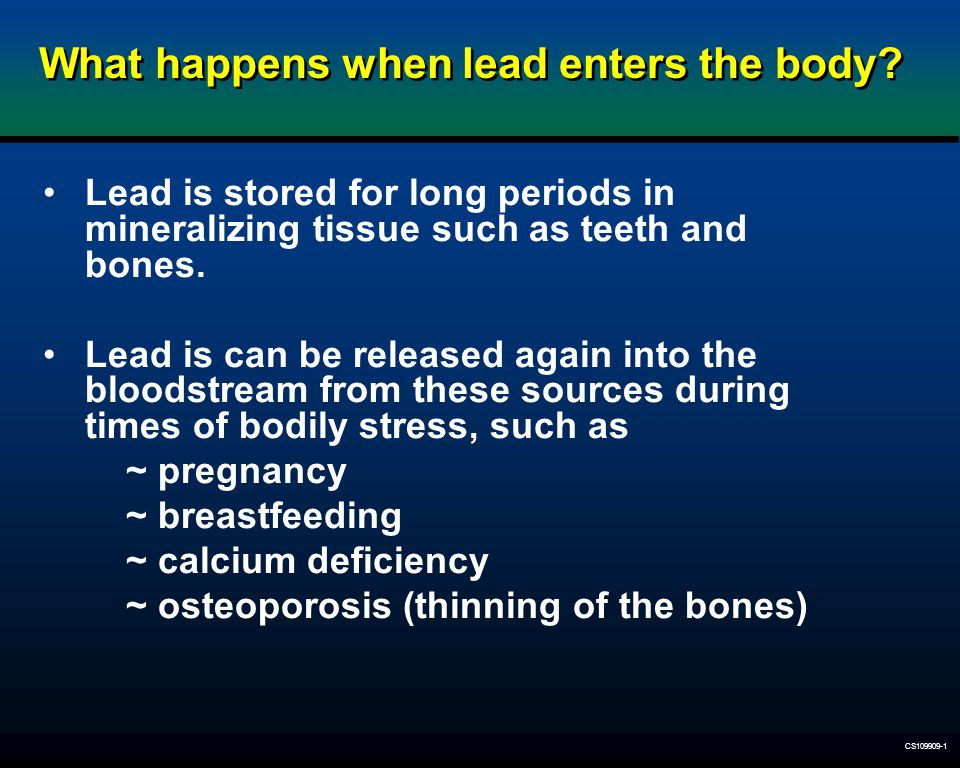 What happens when lead enters the body