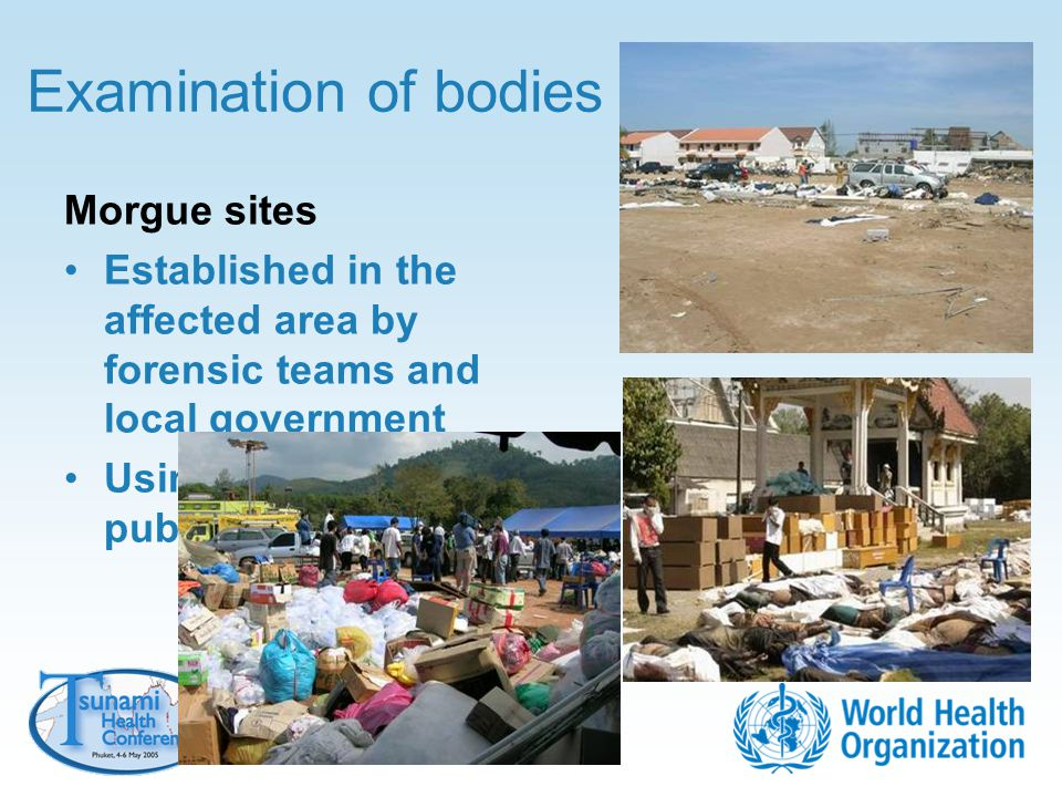 Examination of bodies Morgue sites