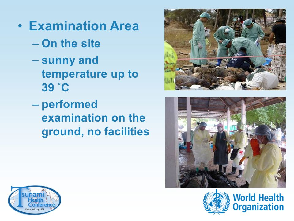Examination Area On the site sunny and temperature up to 39 ˚C