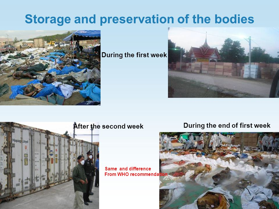 Storage and preservation of the bodies