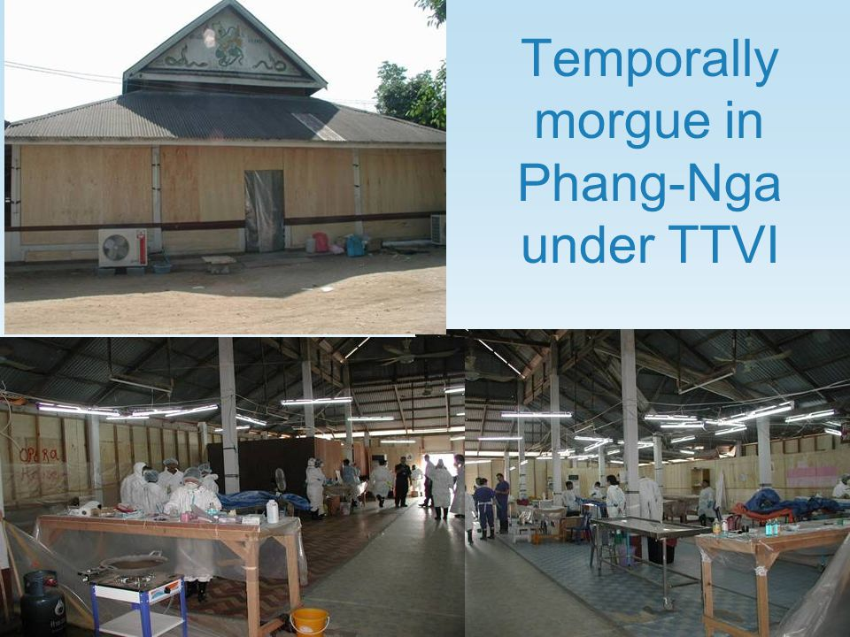 Temporally morgue in Phang-Nga under TTVI