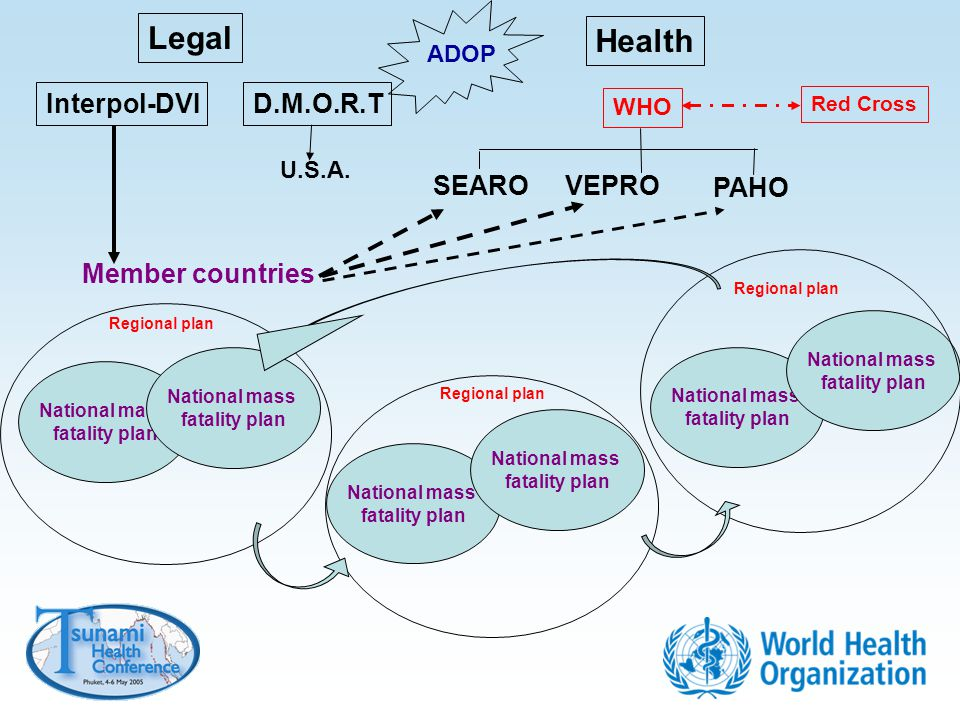 Legal Health Interpol-DVI D.M.O.R.T SEARO VEPRO PAHO Member countries