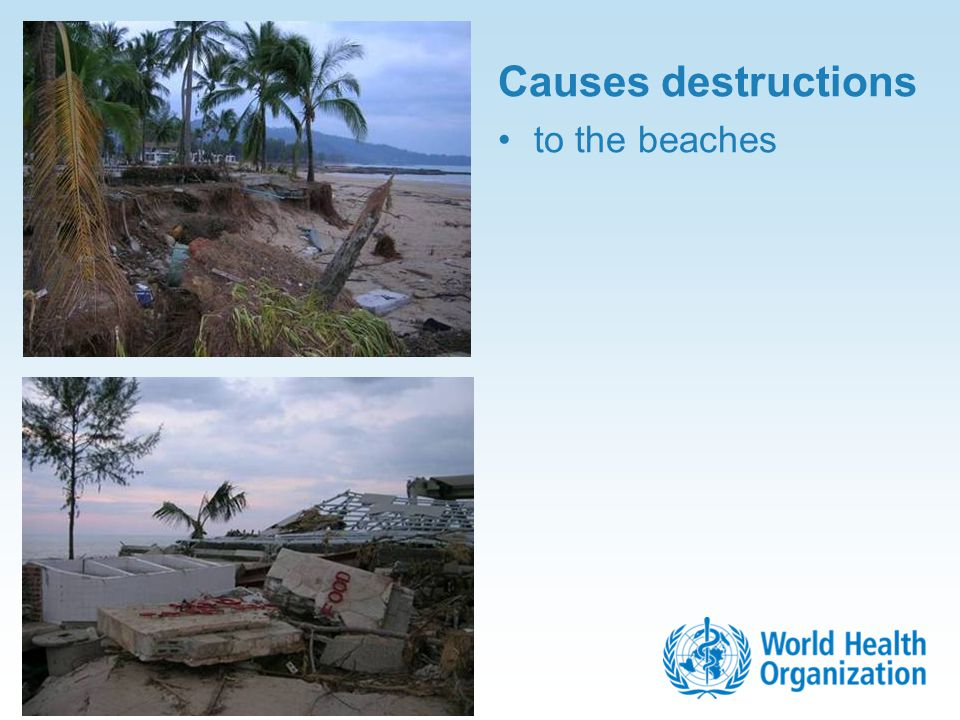 Causes destructions to the beaches