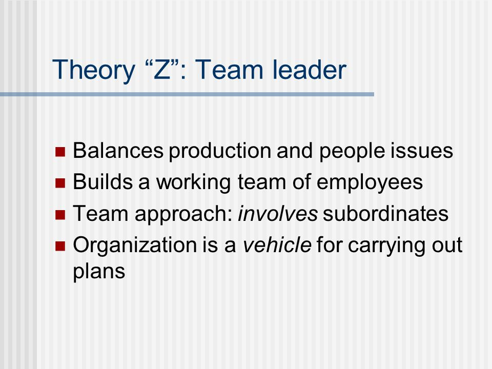 Theory Z : Team leader