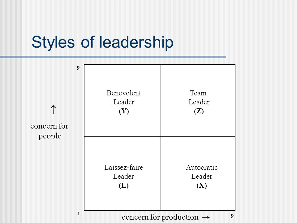 Styles of leadership  concern for people concern for production 