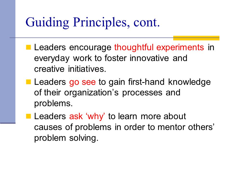 Guiding Principles, cont.