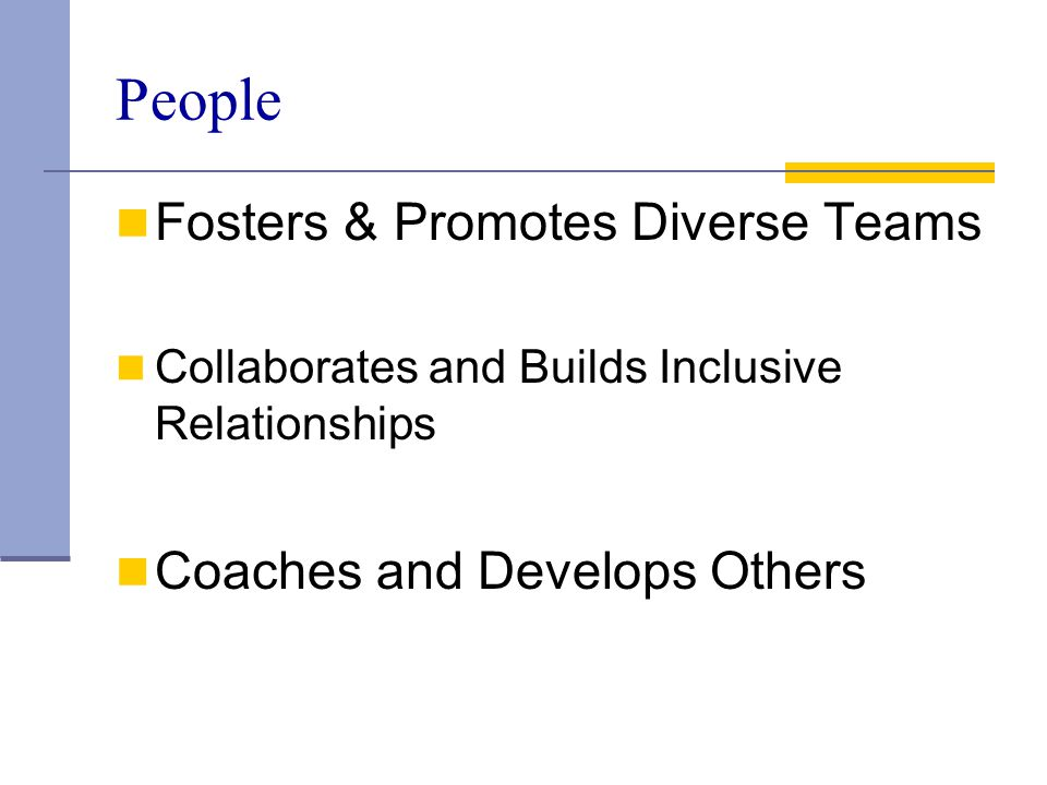People Fosters & Promotes Diverse Teams Coaches and Develops Others
