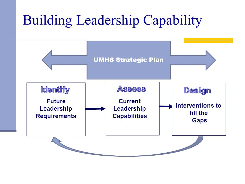 Building Leadership Capability