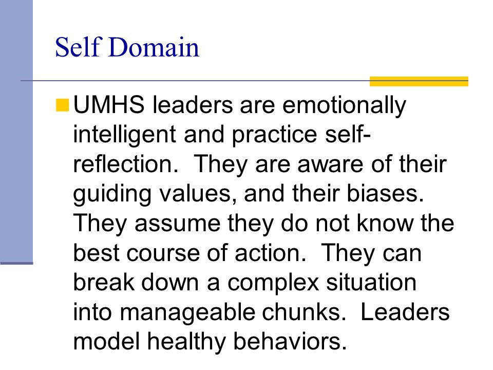 Self Domain