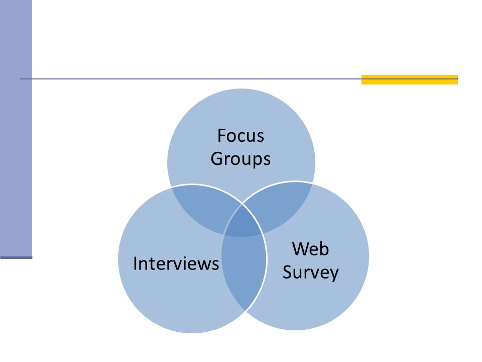 Focus Groups Web Survey Interviews