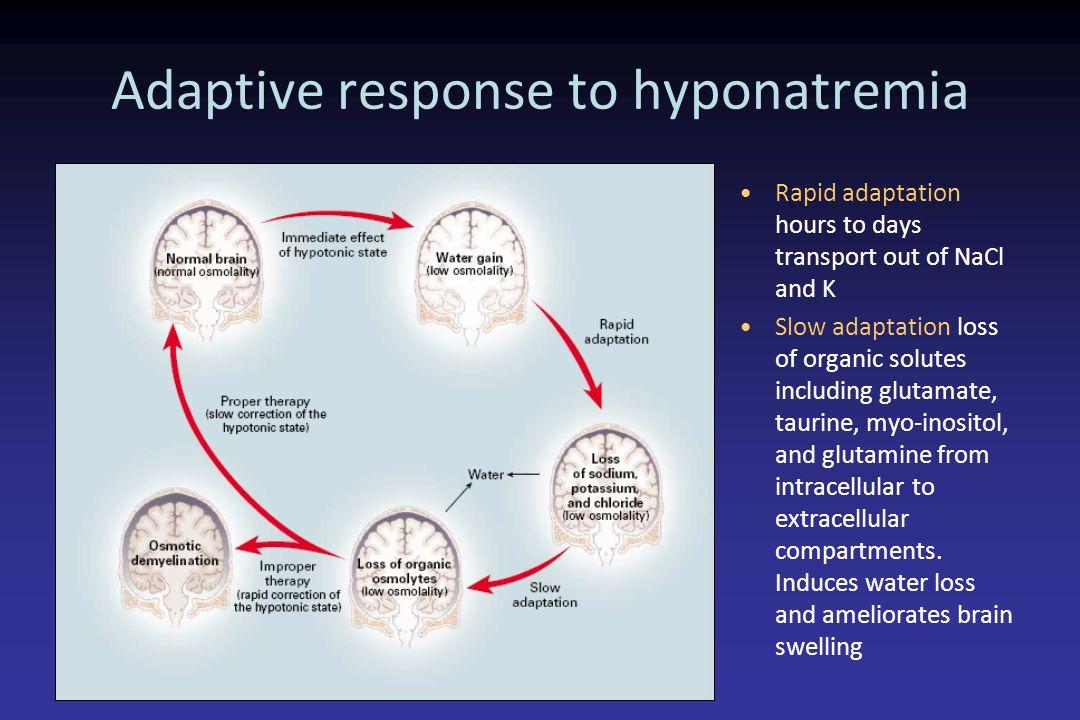 Adaptive response to hyponatremia