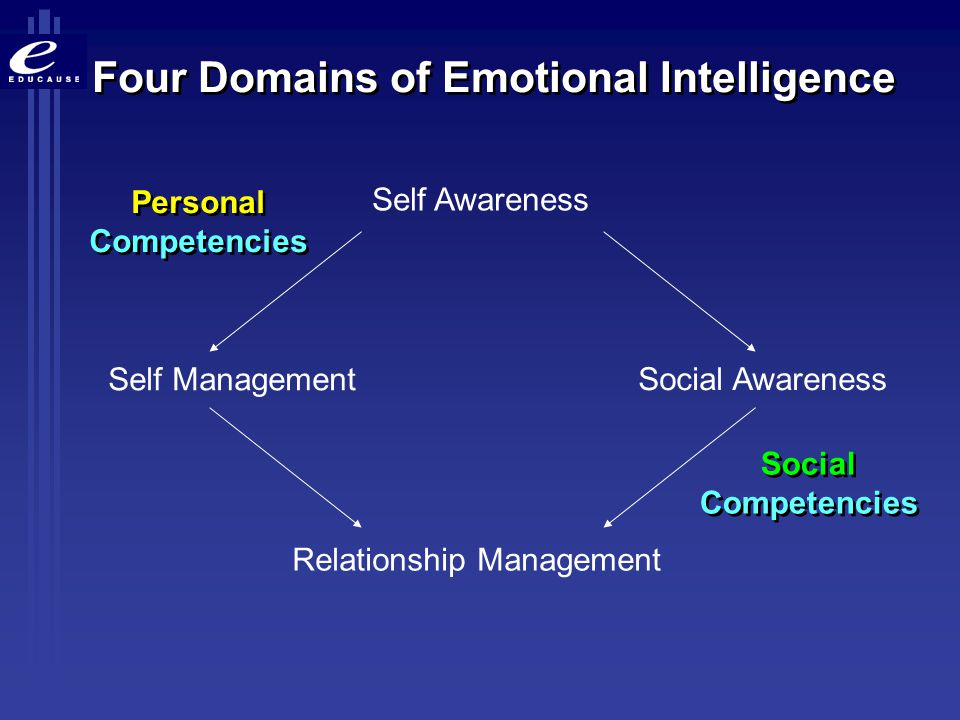 Four Domains of Emotional Intelligence
