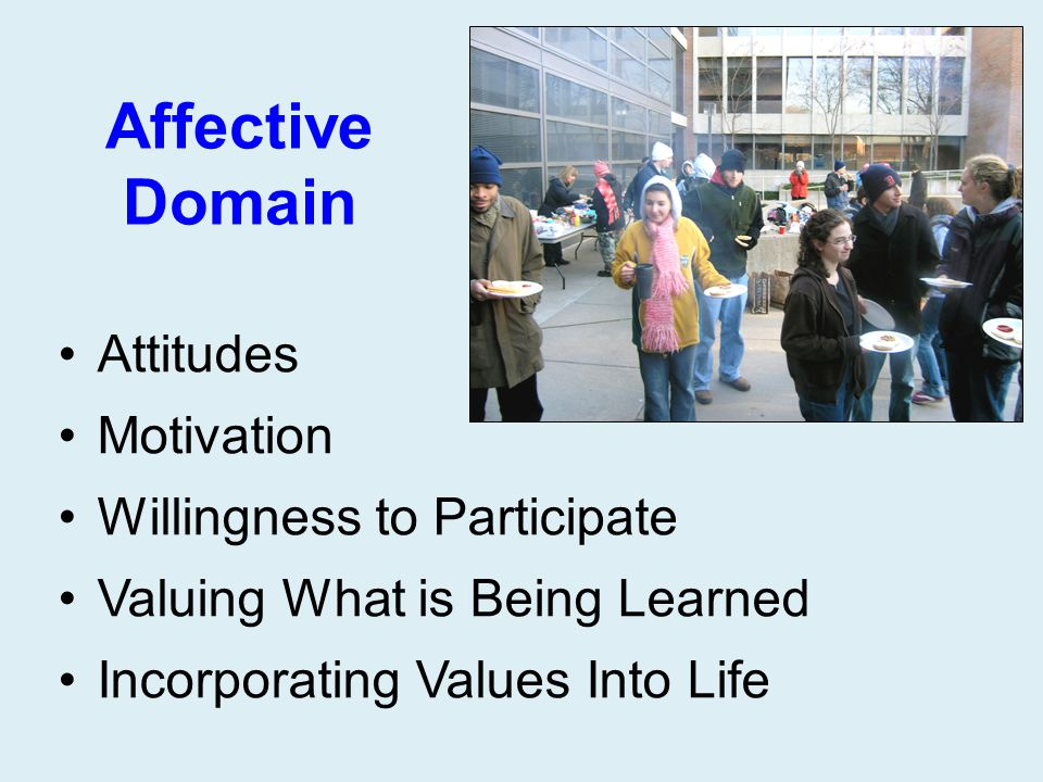 Affective Domain Attitudes Motivation Willingness to Participate