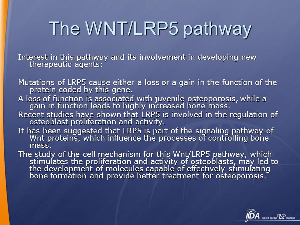 The WNT/LRP5 pathway Interest in this pathway and its involvement in developing new therapeutic agents: