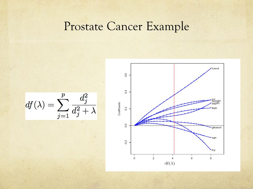 Prostate Cancer Example