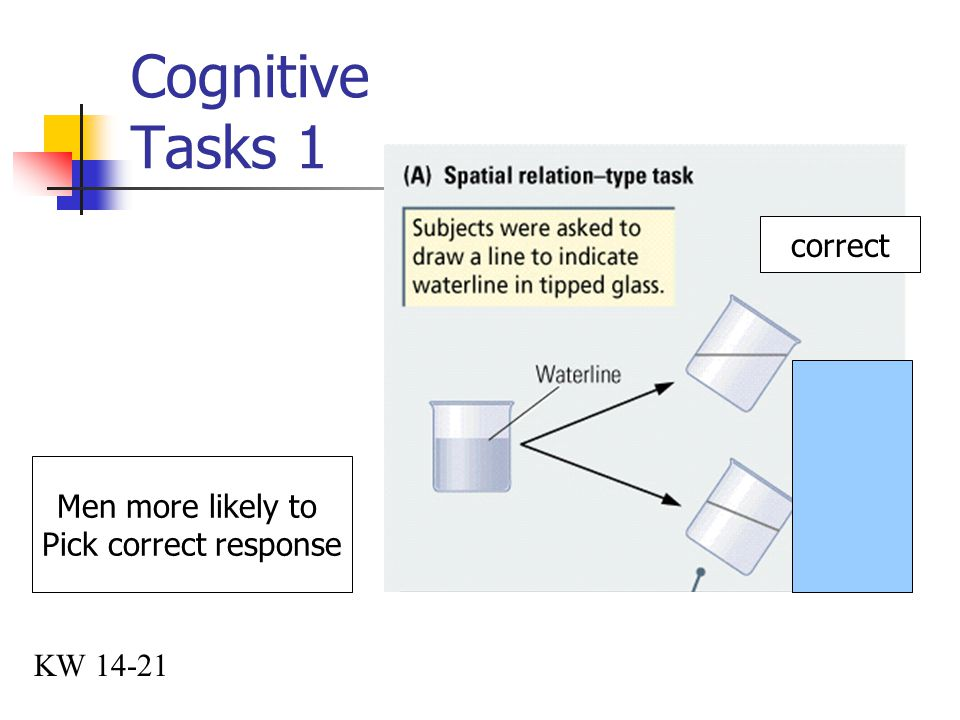 Cognitive Tasks 1 correct Men more likely to Pick correct response