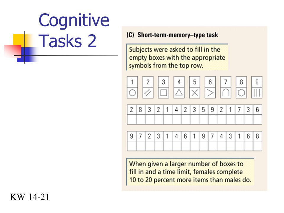 Cognitive Tasks 2 KW 14-21