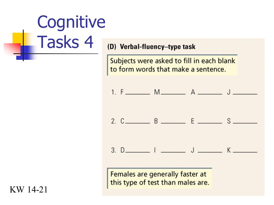 Cognitive Tasks 4 KW 14-21
