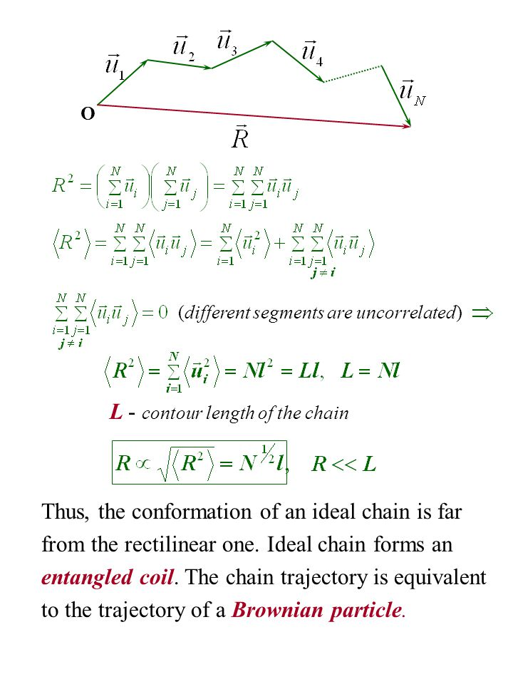L - contour length of the chain