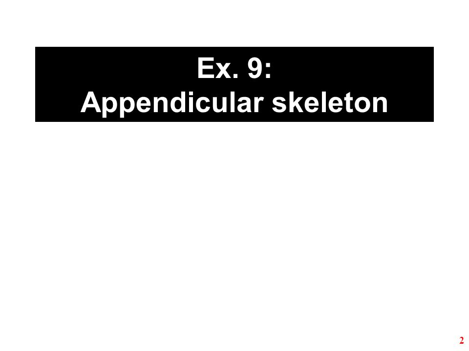 Ex. 9: Appendicular skeleton