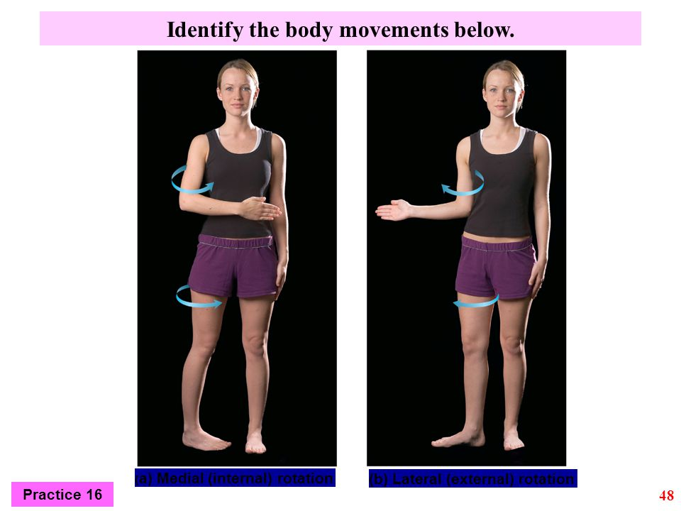 Identify the body movements below.