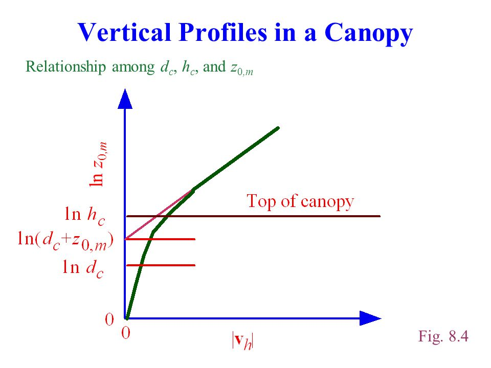 Vertical Profiles in a Canopy