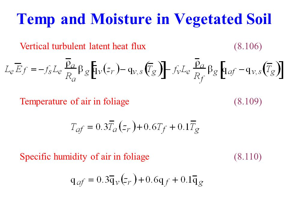 Temp and Moisture in Vegetated Soil