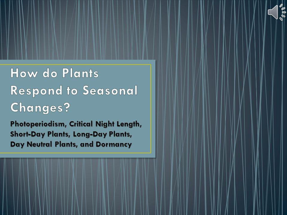 How do Plants Respond to Seasonal Changes