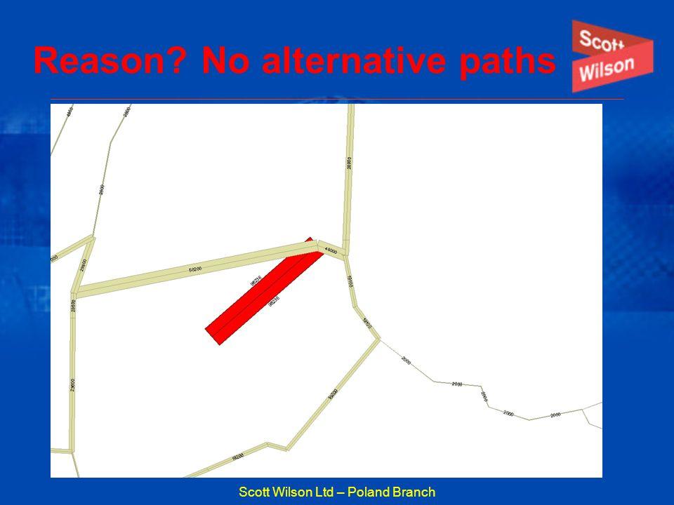 Reason No alternative paths