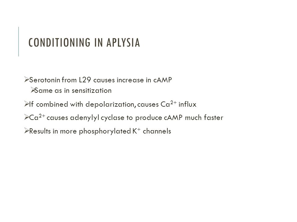 Conditioning in Aplysia