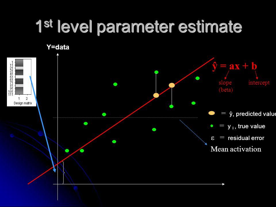 1st level parameter estimate